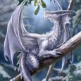 white dragon greeting cards
